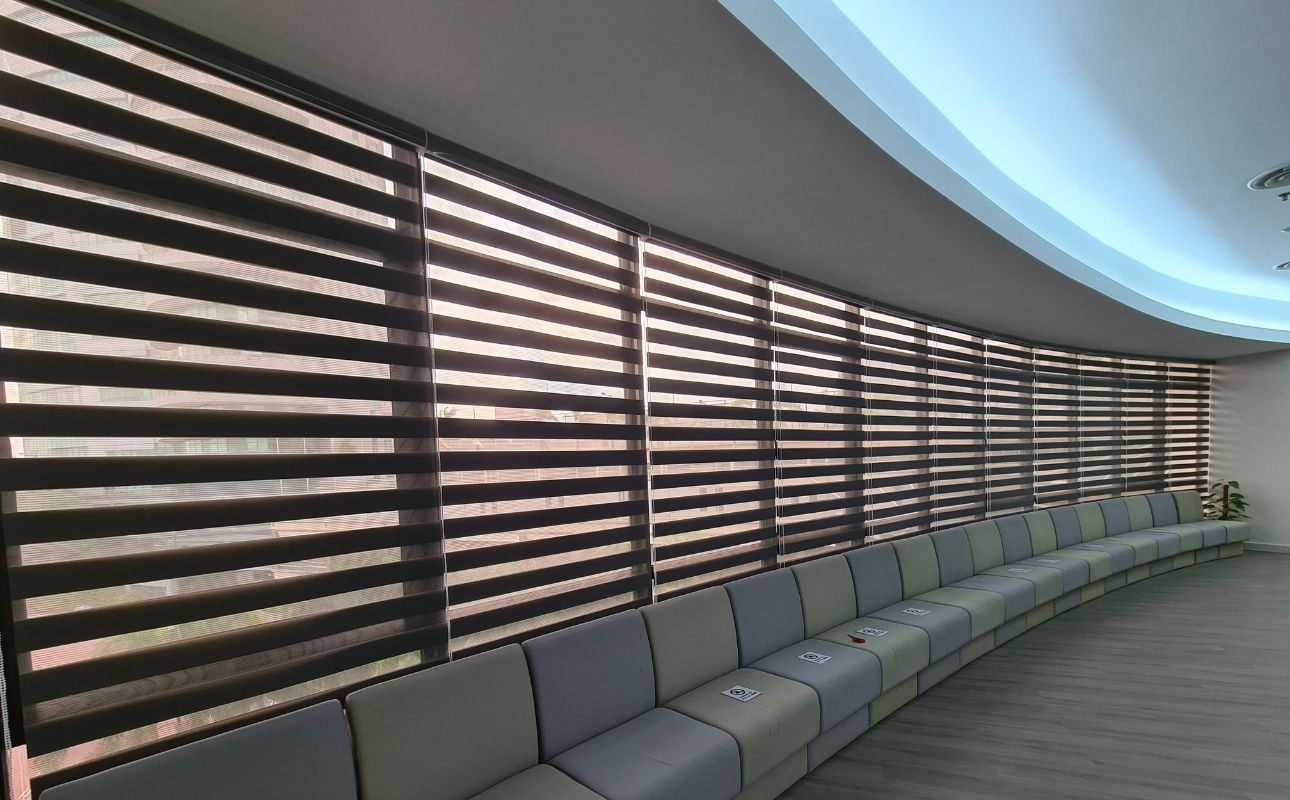 office windows zebra blinds