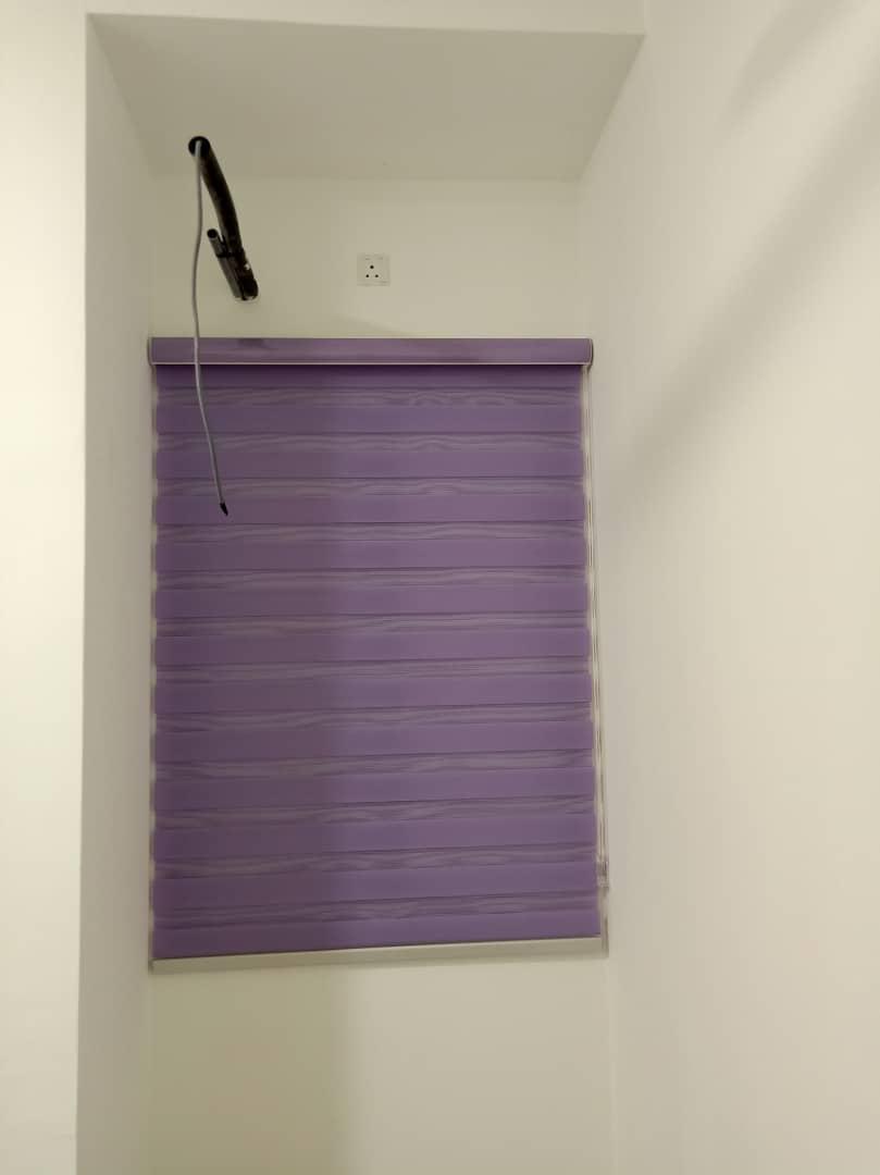 purple zebra blinds
